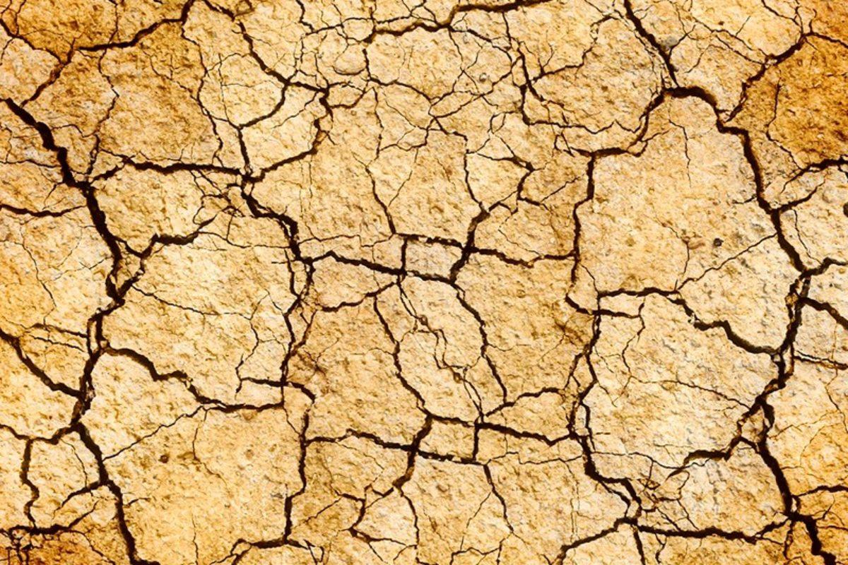 [Arrêté préfectoral] Vigilance sécheresse 2019