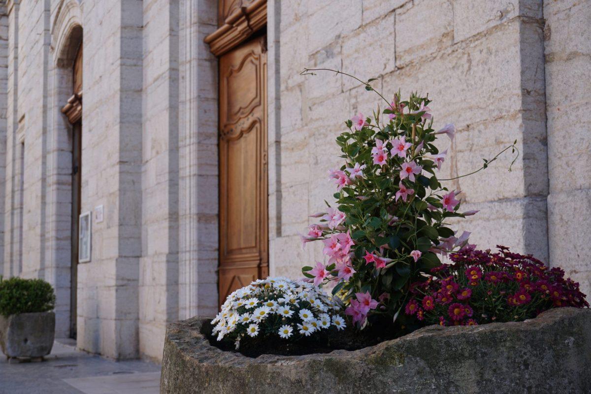 [Photos] Fleurissement de l'entrée de la collégiale